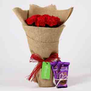 10 Red Carnations & Dairy Milk Silk Combo